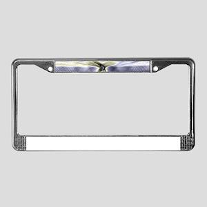Erratic Flight (Slate) License Plate Frame