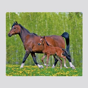 Bay Arabia Mare and Foal Throw Blanket