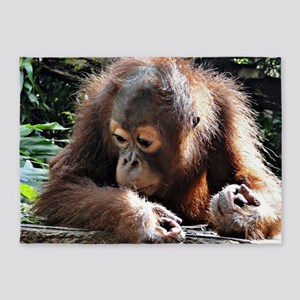 amazing Animal Orang Baby 5'x7'Area Rug