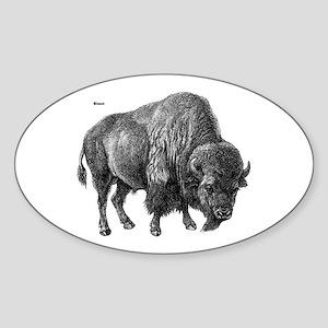 Bison Oval Sticker