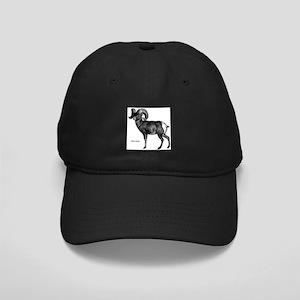 Bighorn Sheep Black Cap