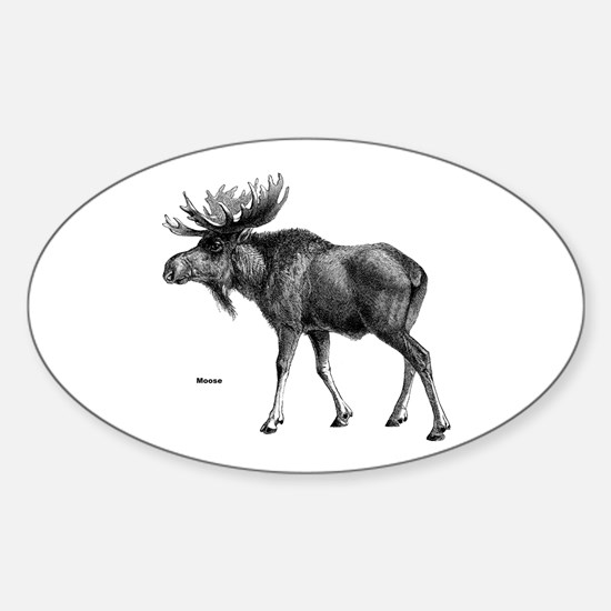 Moose Oval Decal