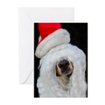 Berner Christmas Greeting Cards (pack Of 10)