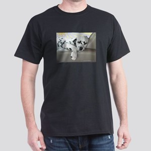Dalmatian Sleeping in Car T-Shirt