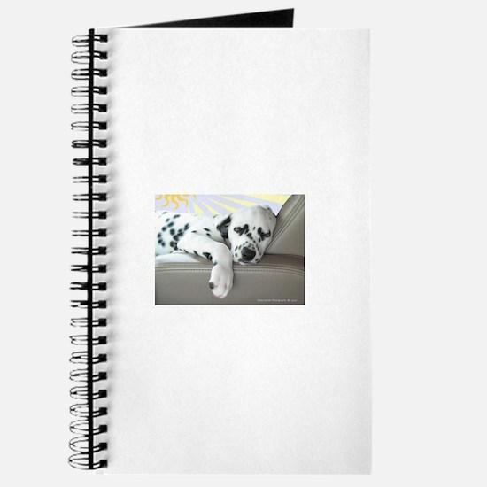 Unique Photography Journal