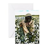 Young Cotton Picker Note Cards (Pk of 10)