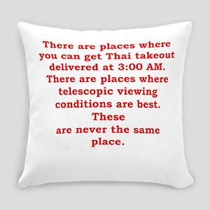astronomer Everyday Pillow