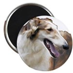 Red and White Borzoi Head, Magnet