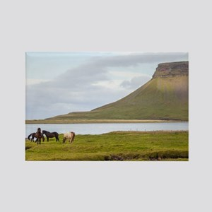 Icelandic Horses Vesturland Islan Rectangle Magnet