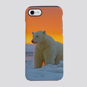 Polar Bear iPhone 8/7 Tough Case