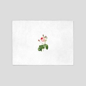 Pink Vintage Rose, Rosa Centifolia 5'x7'Area Rug