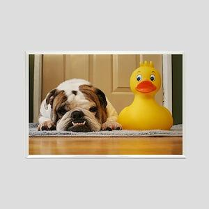 Grover vs. Duckie Magnet