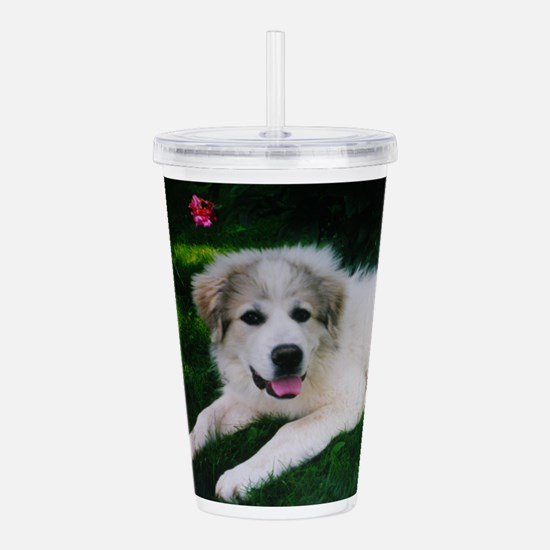 Great pyrenees puppy Acrylic Double-wall Tumbler