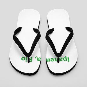 Ipanema Beach Flip Flops