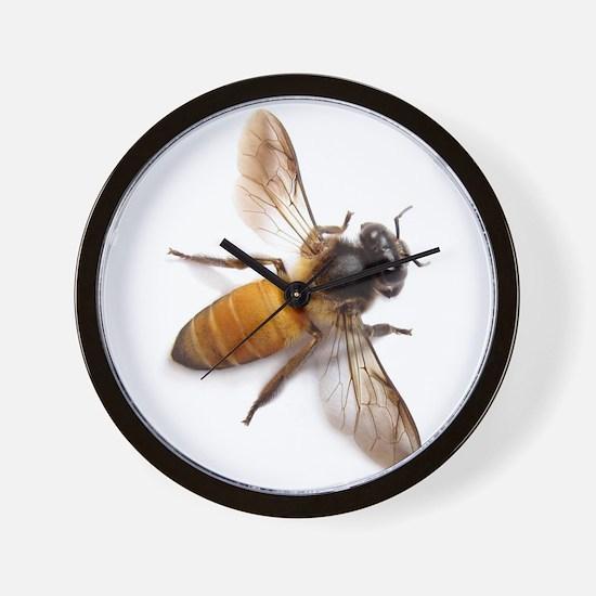 Cute Honey Wall Clock
