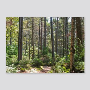 Forest Trail 5'x7'Area Rug