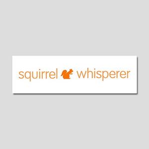 Funny Squirrel Car Magnet 10 x 3
