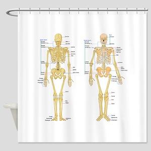 Brain Anatomy Shower Curtains