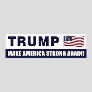 Trump Wall Decal