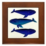 Bowhead Whale Framed Tile