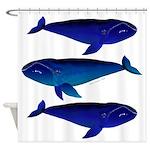 3 Bowhead Whales Shower Curtain