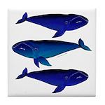 3 Bowhead Whales Tile Coaster