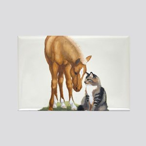 Mini Horse and Cat Rectangle Magnet