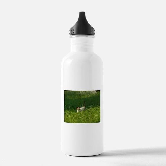 Louie Water Bottle