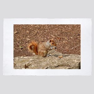 Cute Squirrel eating nuts 4' x 6' Rug