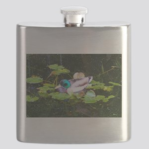 Mallard duck in a pond Flask