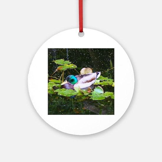 Mallard duck in a pond Round Ornament