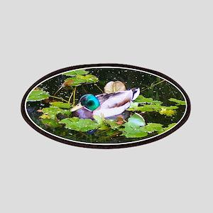 Mallard duck in a pond Patch