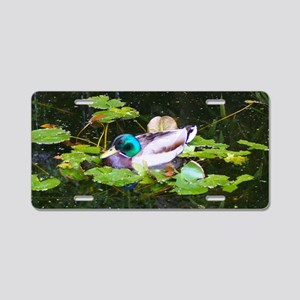 Mallard duck in a pond Aluminum License Plate