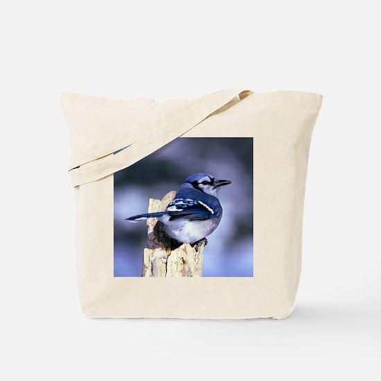 Cute Blue jay Tote Bag