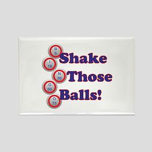 Bingo Shake Magnets