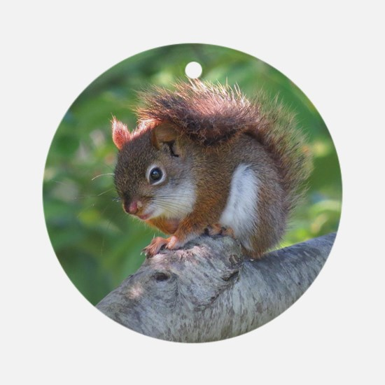 Red Squirrel Round Ornament