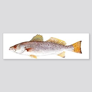 Speckled Trout Bumper Sticker