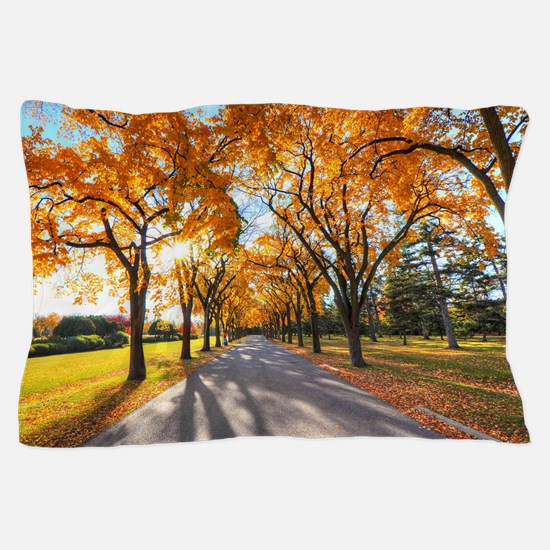 Autumn Road Pillow Case