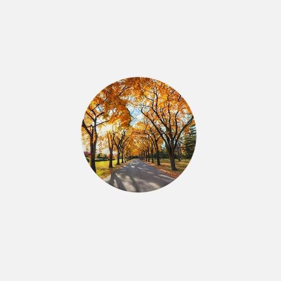 Autumn Road Mini Button