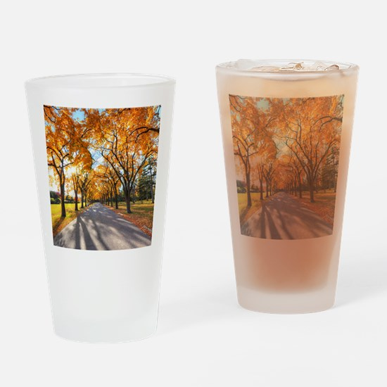 Autumn Road Drinking Glass