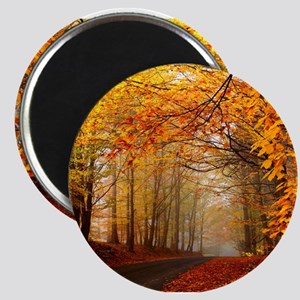 Road At Autumn Magnets