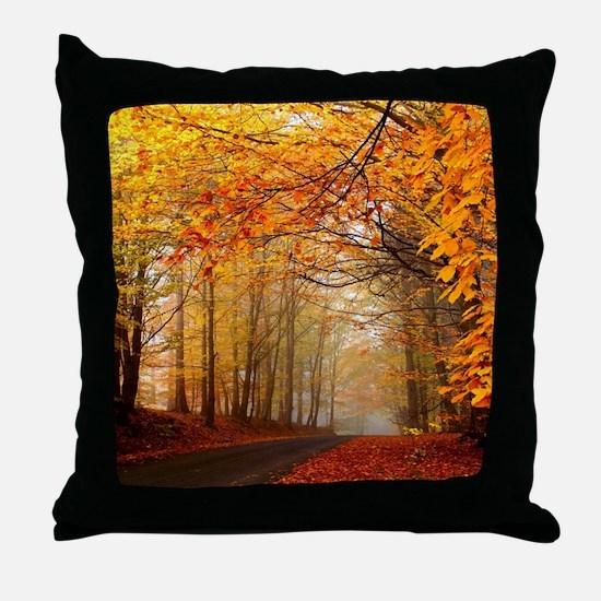 Road At Autumn Throw Pillow