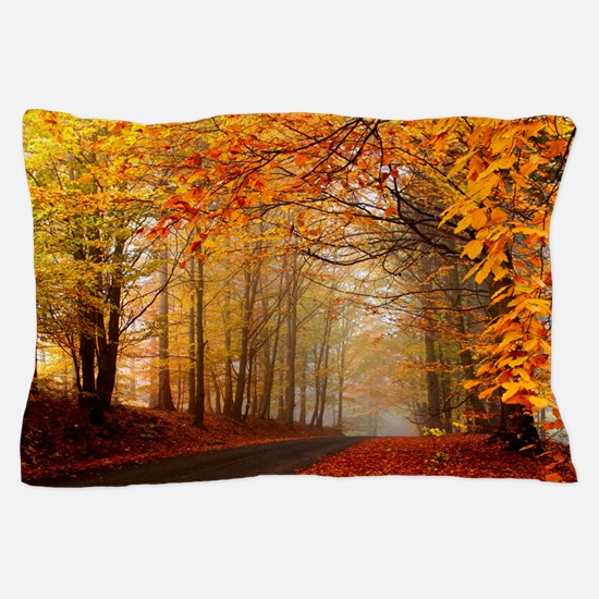 Road At Autumn Pillow Case