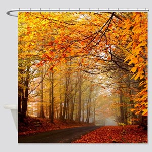 Road At Autumn Shower Curtain