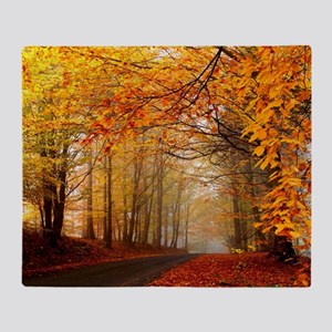 Road At Autumn Throw Blanket