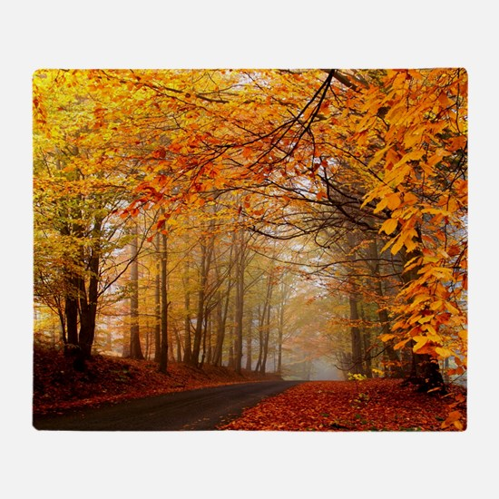 Road At Autumn Throw Blanket