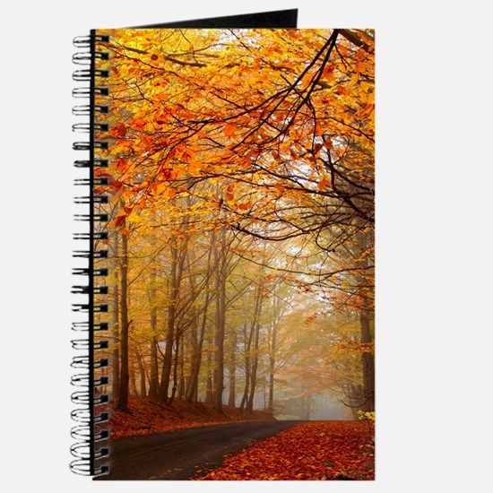 Road At Autumn Journal