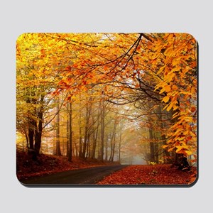 Road At Autumn Mousepad