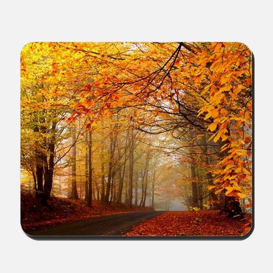 Road At Autumn Mousepad
