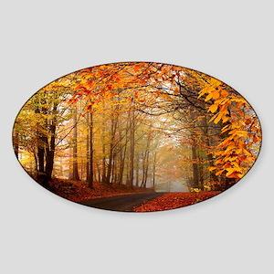 Road At Autumn Sticker